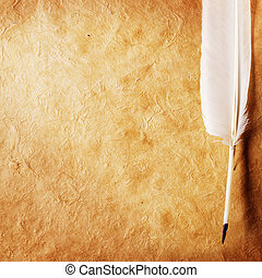 feather on a old paper - feather on a background of the...