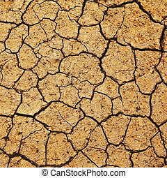 field of baked earth after a long drought.