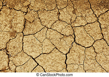 field of baked earth after a long drought