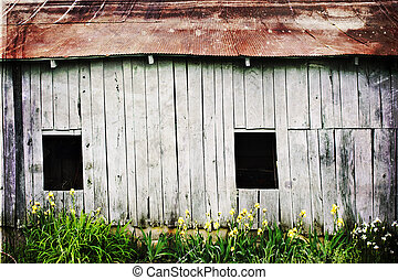 weathered barn - Photo based illustration of a weathered...