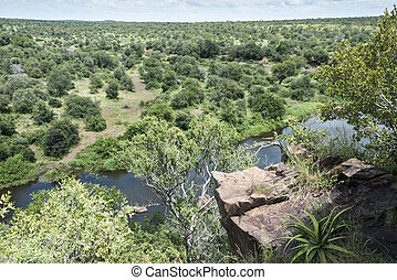 safari in kruger national park south africa - view from high...