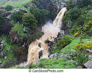 Banias waterfall in the spring at the Golan Heights Israel...
