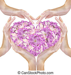 Heart Flowers in Female Hands.Love concept.Beautiful...
