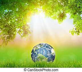 Earth on Fresh spring green grass with green leaf (Elements...