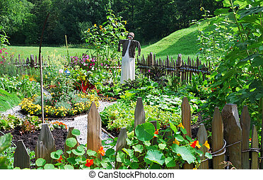 Vegetable garden with a scarecrow.