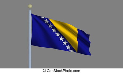 Flag of Bosnia and Herzegovina with alpha matte - Flag of...