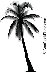 silhouetted coconut tree on the white background