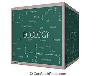 Ecology Word Cloud Concept on a 3D Blackboard