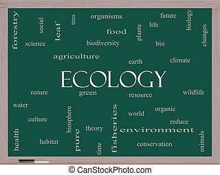 Ecology Word Cloud Concept on a Blackboard