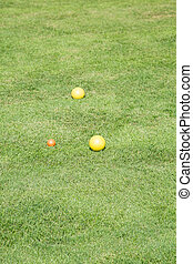 Yellow Bocce Balls on a Green Lawn - Yellow bocce balls on a...