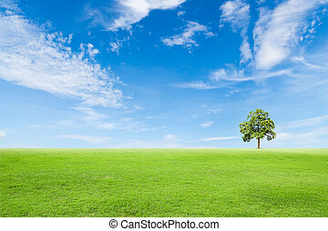 green grass field with tree and blue sky
