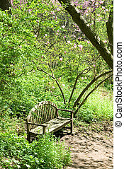 PEACEFUL RESTING PLACE AFTER A WALK - bench in the forest...
