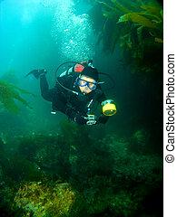 Female Scuba Diver swimming through the Kelp in Catalina