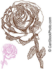 Rose Drawing - Hand drawn rose icon