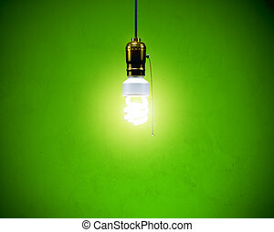 Compact Fluorescent Bulb - Energy-efficient CFL bulb shining...