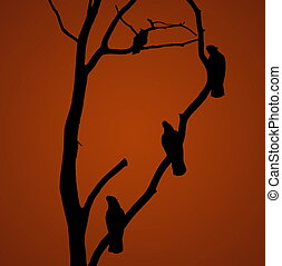 parrot silhouette on the tree