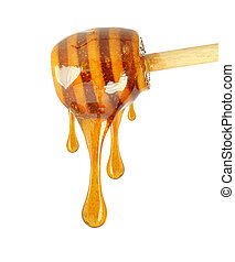 honey - Honey dripping from a wooden honey dipper isolated...