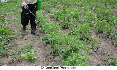 farmer sprayer potato - a farmer spraying with pesticides...