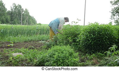 senior woman gardening - senior woman with waterproof...