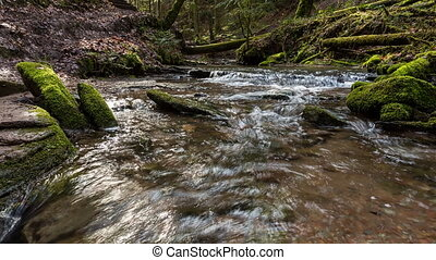 creek in the canyon Hrschbach in a timelapse film