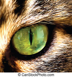 Face of Maine Coon cat showing one eye Vector - Close up...