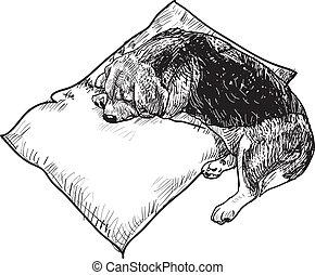 Sleeping beagle - Beagle sleeping on white pillow