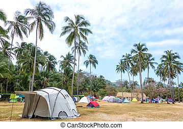 Tropical Campsite - Campsite in a grove of palm trees in...