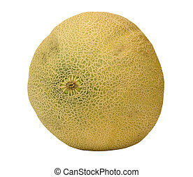 FRESH CANTALOUPE - fresh cantaloupe on a white background