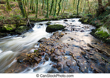 The River Par cascading over mossy boulders at Ponts Mill in...