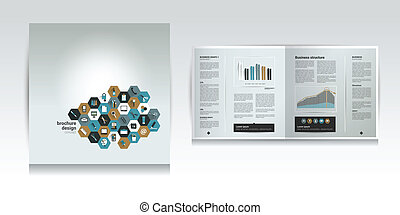 Brochure design template Infographic vector
