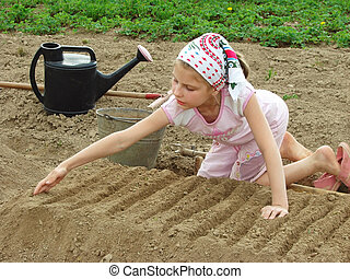 young farmer - child preparing vegetable bed to sowing...