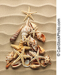 Sea shell on sand - Christmass tree from shells on sand...