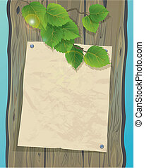 Old paper on a wooden wall and green spring leaves of birch. Background with empty space for your text