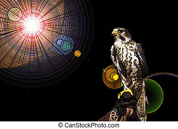 Hawk Vision Quest - Hawk Photograph with Adobe PSE 9 special...