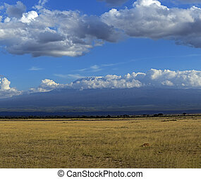 Amboseli National Park - Mountain Kelimandzharo in African...