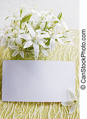 Lilies flowers with a card - White delicate spring flowers...