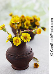 Flowers coltsfoot in ware pottery handmade