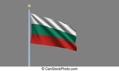 Flag of Bulgaria with alpha matte - Flag of Bulgaria waving...