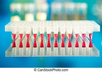 ferramentas, PCR, amplificação, DNA:, 96-well,...