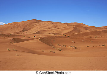 Sand Dunes in the Sahara - Sand dunes in the Sahara Desert...