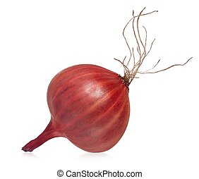 Purple onion - Raw purple onion with roots isolated on a...