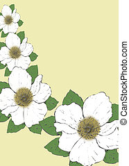 Grahic Magnolias - Card graphic of magnolias