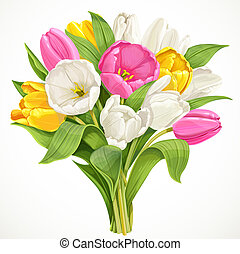 花束, チューリップ, 白, 隔離された, 背景