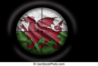 Welsh Target - Sniper scope aimed at the Welsh flag