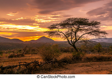 Evening view of the territory of the tribe Bana in Ethiopia