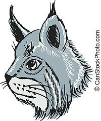 lynx - hand drawn, sketch, cartoon illustration of lynx