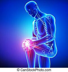 macho, rodilla, dolor, anatomía, azul