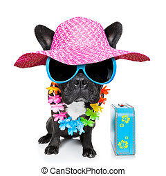 holiday summer dog - dog on vacation wearing fancy...