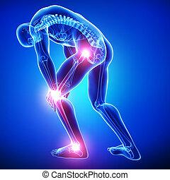 anatomía, macho, coyuntura, dolor, azul
