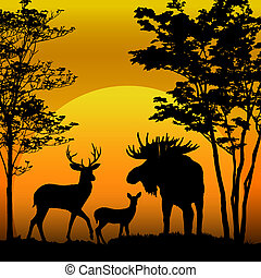 Deer and moose silhouette on sunset background